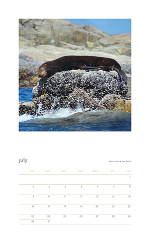 Among Nature Vancouver Island 2017 calendar sample month